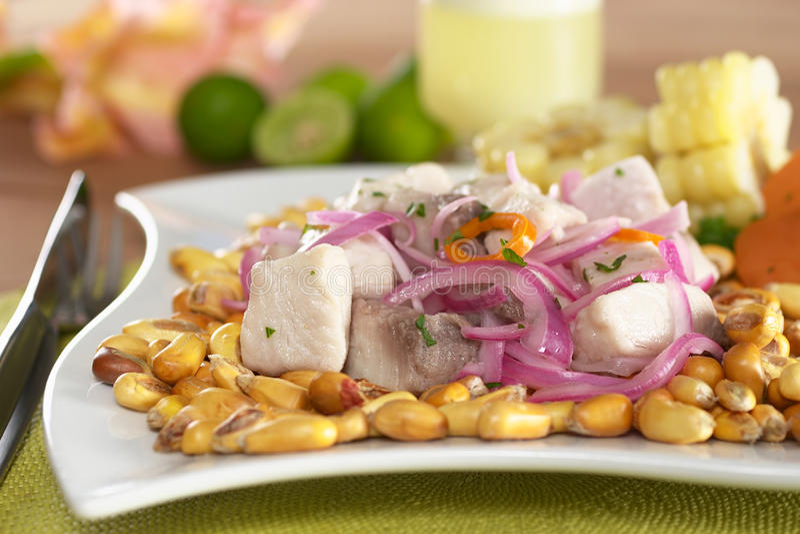 Download Peruano-Estilo Ceviche imagem de stock. Imagem de peruvian - 19050409