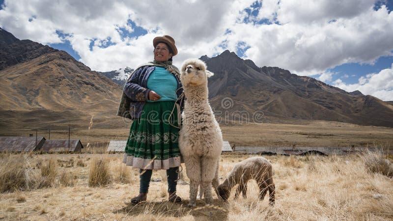 Peruansk kvinna med laman och alpaca royaltyfria bilder