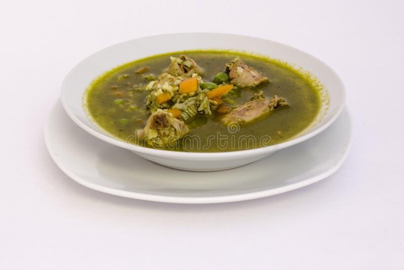 Peruansk maträtt: Feg soppa av koriander (aguadito de pollo) royaltyfri foto