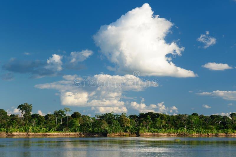 Peruanska Amazonas, Amazon River landskap royaltyfri fotografi