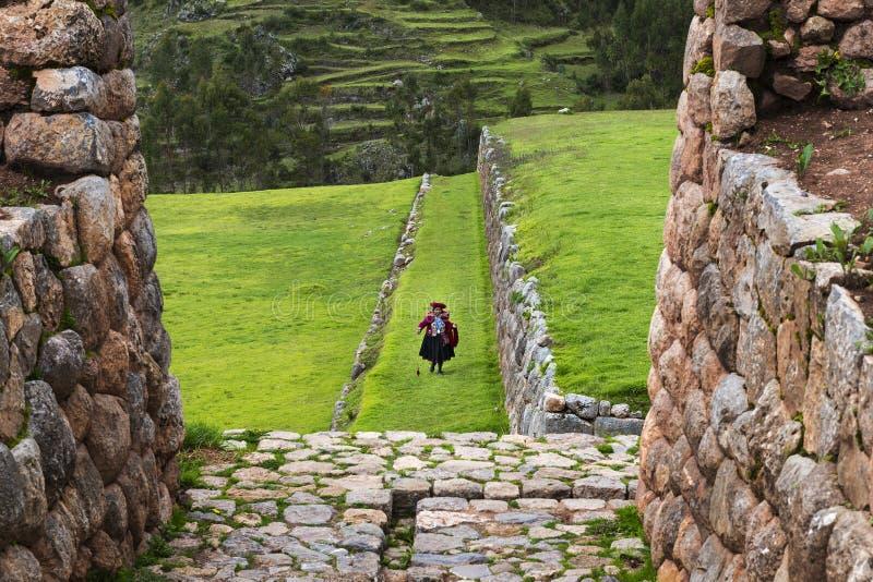 Peruanskt wonan i Inca Ruins i byn av Chinchero, i Peru arkivfoton