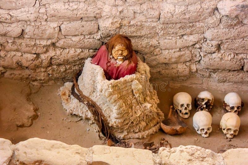 Peruviaanse Brij royalty-vrije stock afbeeldingen