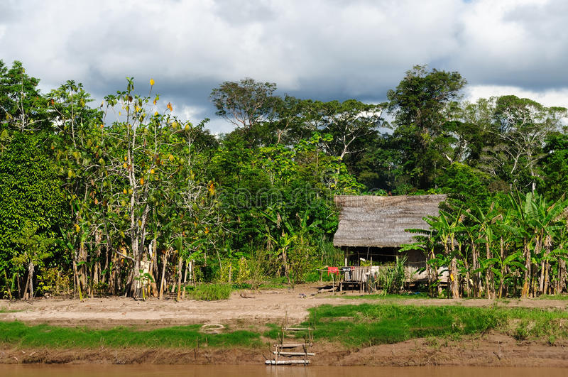 Peruvian Amazonas, Indian settlement stock photography