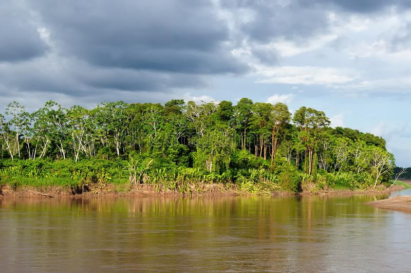 Peruvian Amazonas stock photo