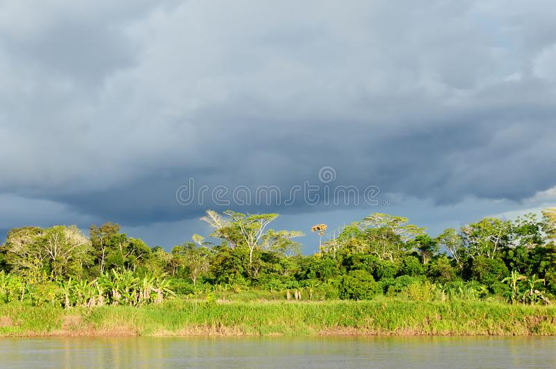 Peruvian Amazonas. Peru, Peruvian Amazonas landscape. The photo present reflections of Amazon river, jungle, iquitos, travel, destination, amazing, scene stock photos