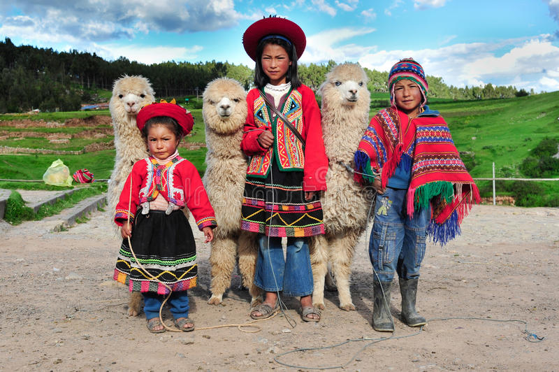 Peruvian children in traditional dresses. 2010-03-08 - Sacsayhuaman, Cusco, Peru: Peruvian children in traditional dresses standing in row with small Alpacas