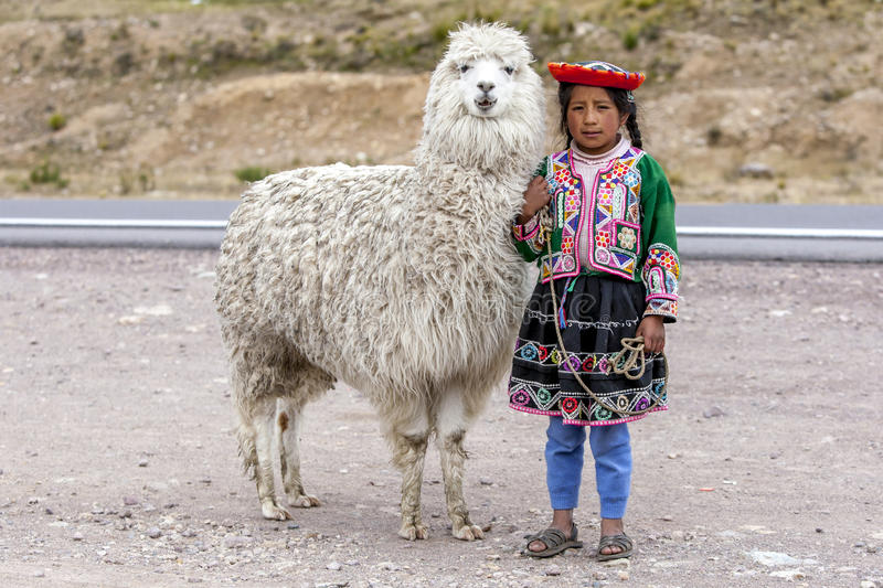 A Peruvian girl stands with a llama in the Puno region of Peru. royalty free stock photos