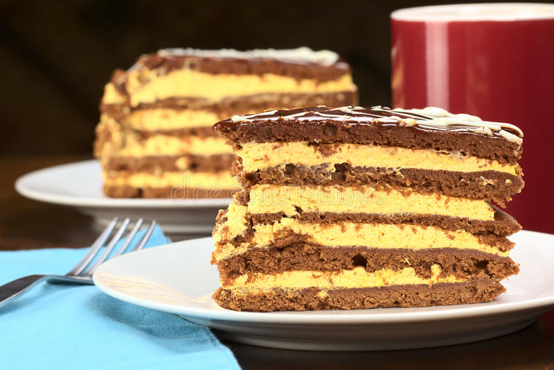 Download Peruvian Lucuma Cake stock photo. Image of confectionery - 20947808