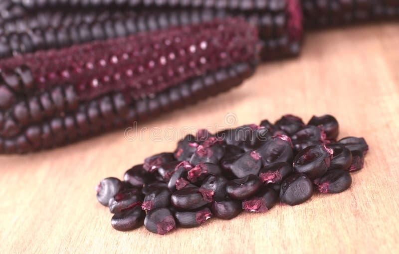 Download Peruvian Purple Corn Grains Stock Photo - Image: 18794564