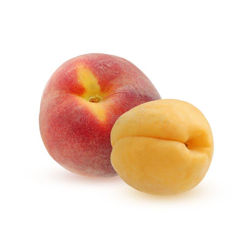 Perzik en abrikoos op een witte achtergrond wordt geïsoleerd die stock foto