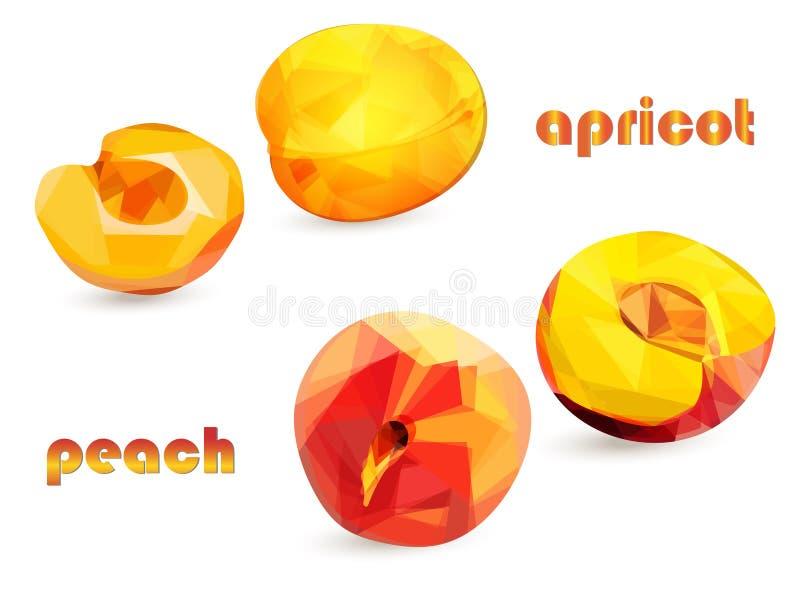 Perzik en abrikozenvruchten met de helften in lage polystijl op een witte achtergrond, geïsoleerde voorwerpen vector illustratie