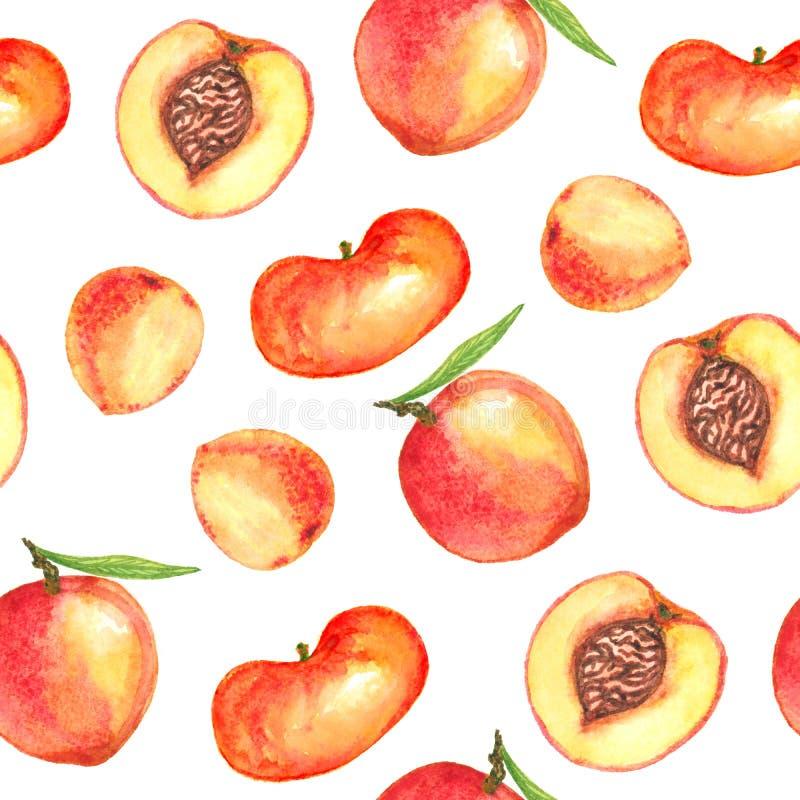 Perzikenverscheidenheid met bladeren en besnoeiingsplakken met kuil stock illustratie