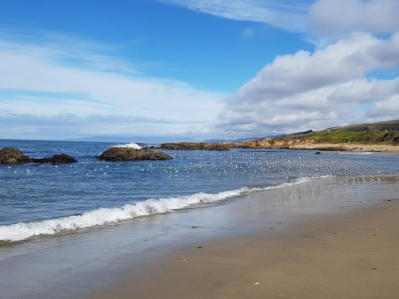 Pesacdero state beach in the coast of california stock images