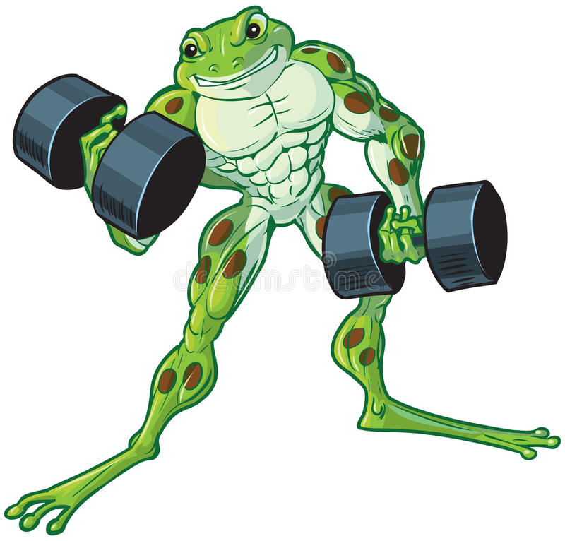 Pesas de gimnasia que se encrespan de la rana muscular de la historieta ilustración del vector