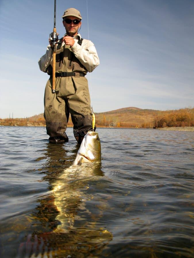 Pesca imagens de stock