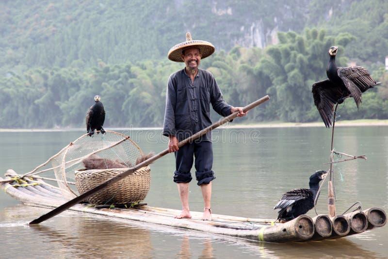 Pesca chinesa do homem com cormorões fotografia de stock royalty free