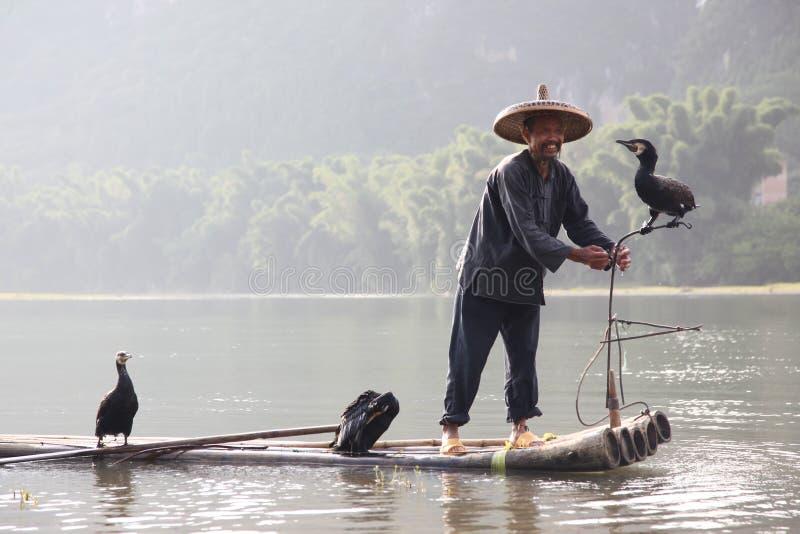 Pesca chinesa do homem com pássaros dos cormorões dentro imagem de stock royalty free
