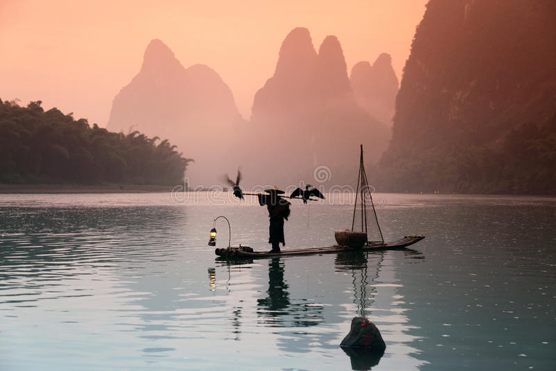 Pesca chinesa do homem com pássaros dos cormorants fotos de stock