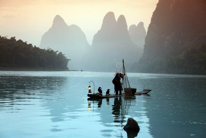 Pesca cinese dell'uomo con gli uccelli dei cormorani immagine stock