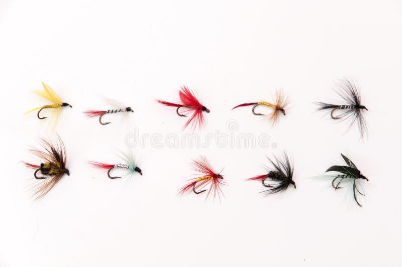 Pesca com mosca fotos de stock