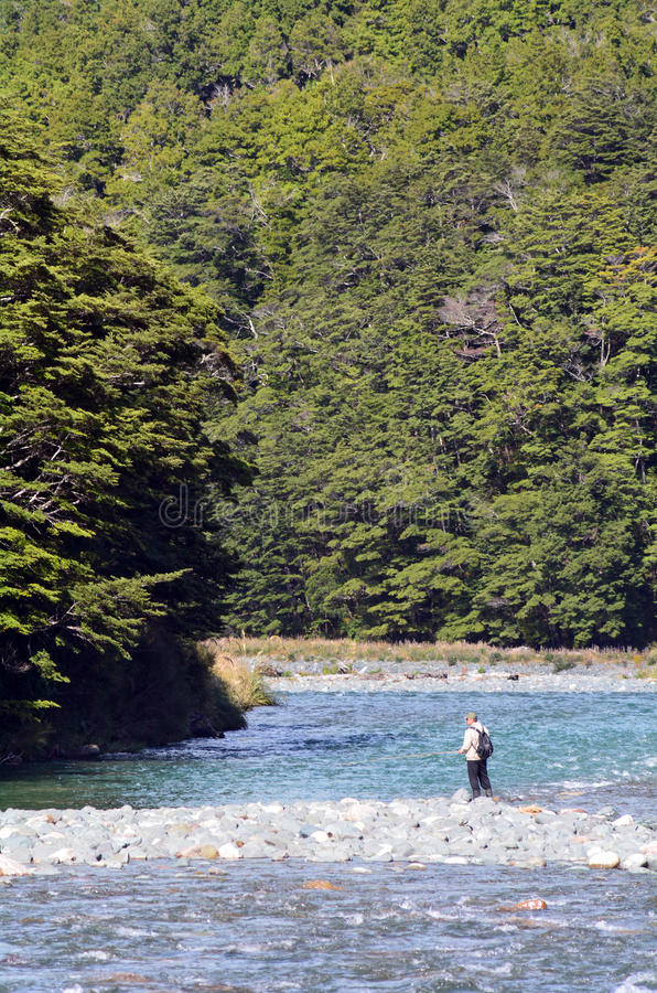 Pesca com mosca do pescador em Fiordland fotografia de stock