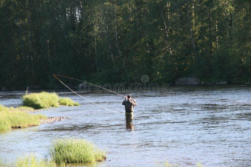 Pesca con la mosca i Byskeälv, Norrland Svezia fotografia stock libera da diritti