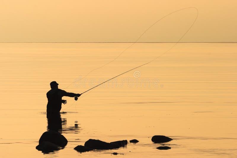 Pesca con la mosca nel tramonto fotografia stock libera da diritti