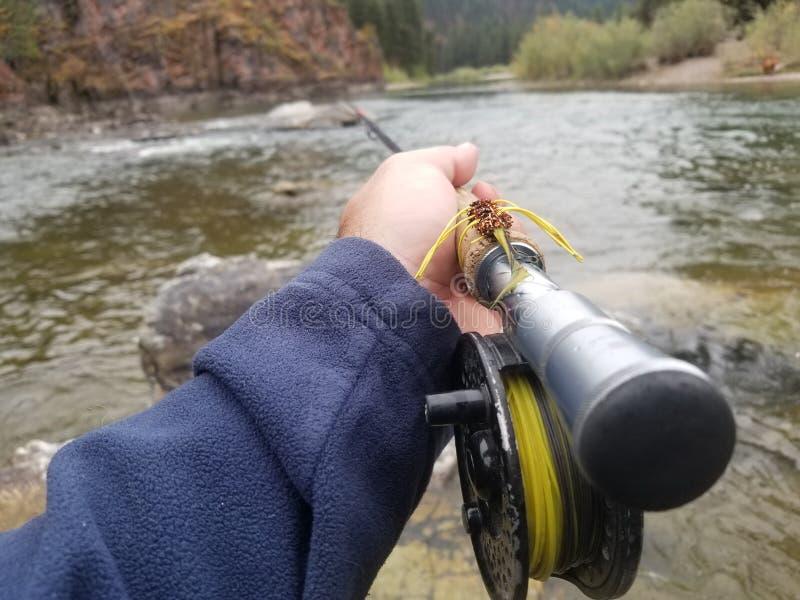 Pesca con mosca de la flámula imagen de archivo libre de regalías