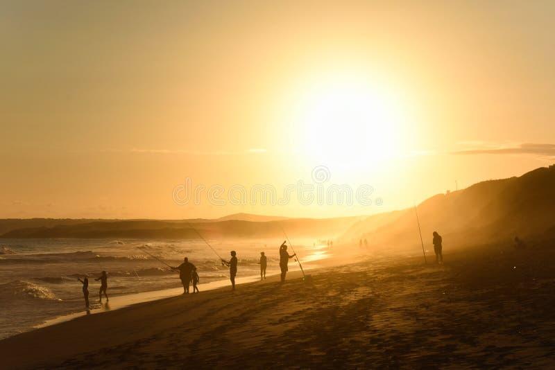 Pesca da família em uma praia da tarde do por do sol fotos de stock