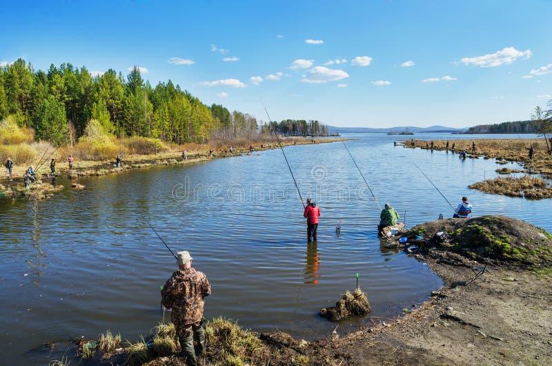 Pesca da mola na boca do rio imagens de stock
