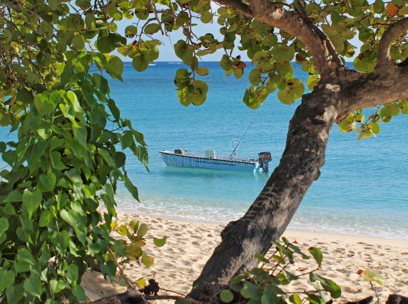 Pesca de Cayman Islands fotografía de archivo