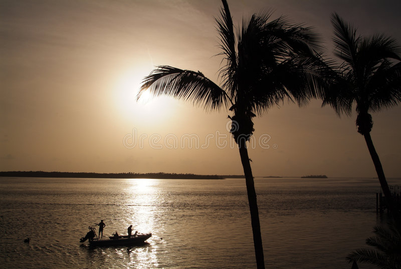 Pesca de Florida fotos de stock royalty free