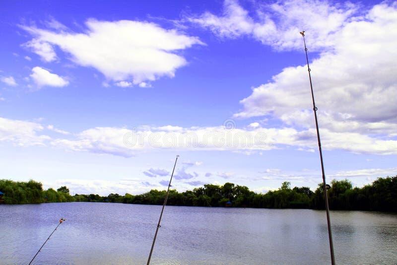 Pesca de la campana en el extremo de la caña de pescar en el fondo de la charca fotografía de archivo libre de regalías