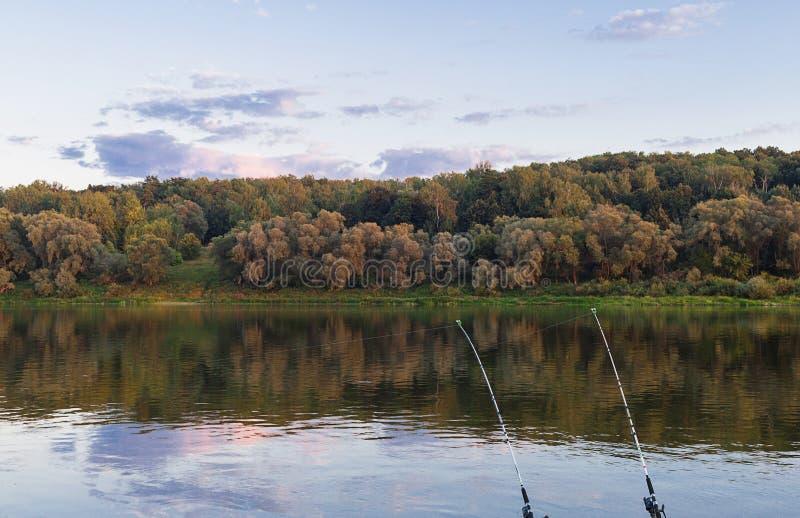 Pesca de la caza en las cañas de pescar del río dos en la orilla de la mañana anterior del bosque foto de archivo