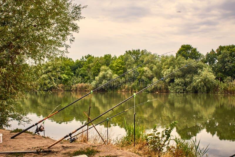 Pesca de la mañana fotografía de archivo