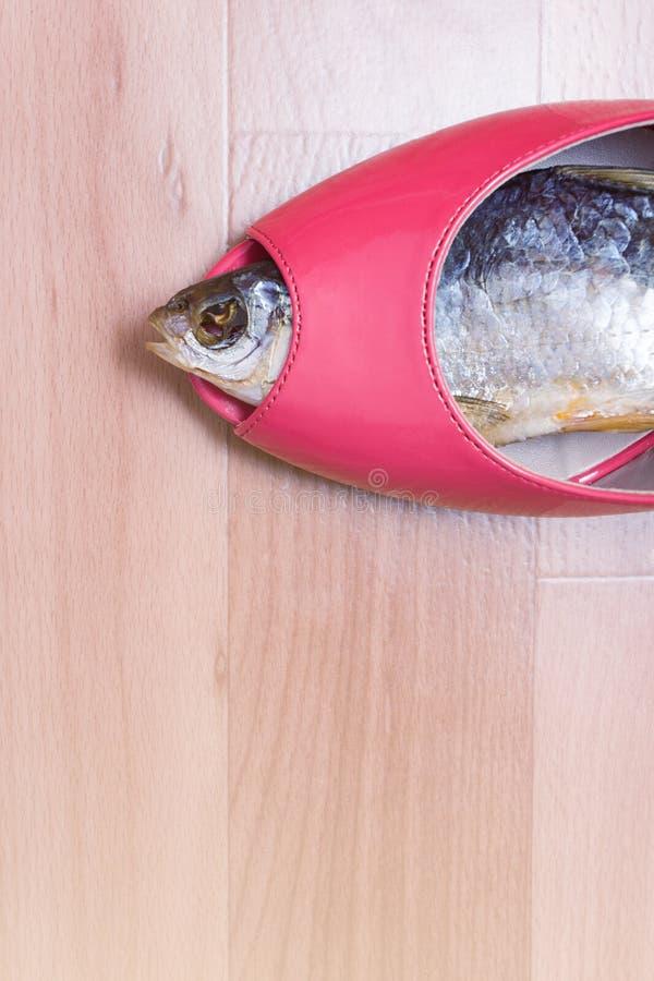 Pesca de la mujer fotografía de archivo