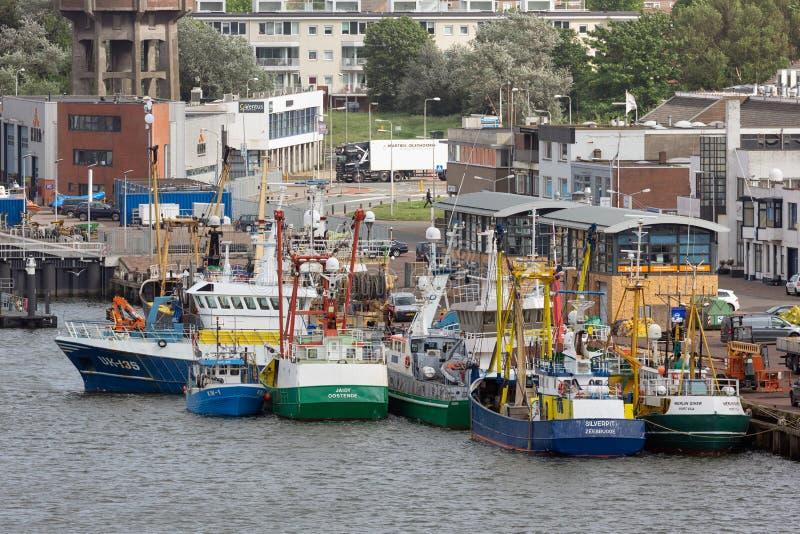 Pesca de las naves en el puerto holandés IJmuiden imagen de archivo
