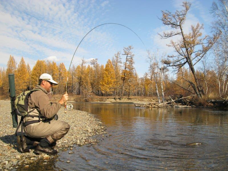 Pesca de mosca fotos de stock royalty free