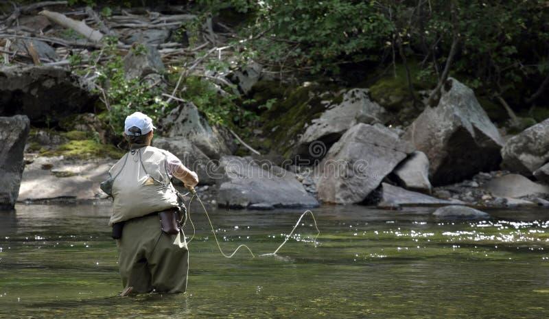 Pesca de mosca em Montana - lanç fotografia de stock