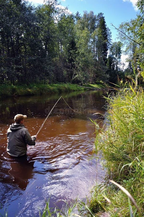Pesca de mosca para la trucha imagen de archivo libre de regalías