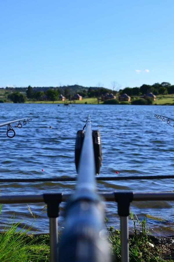 Pesca dei 2 immagini stock libere da diritti