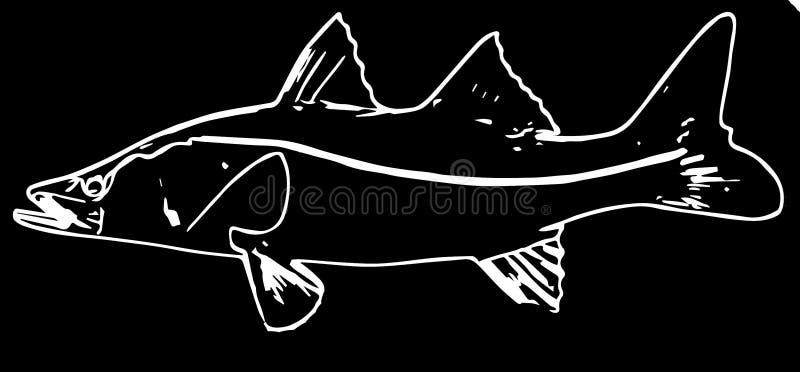Pesca del agua salada de Snook en fondo negro stock de ilustración