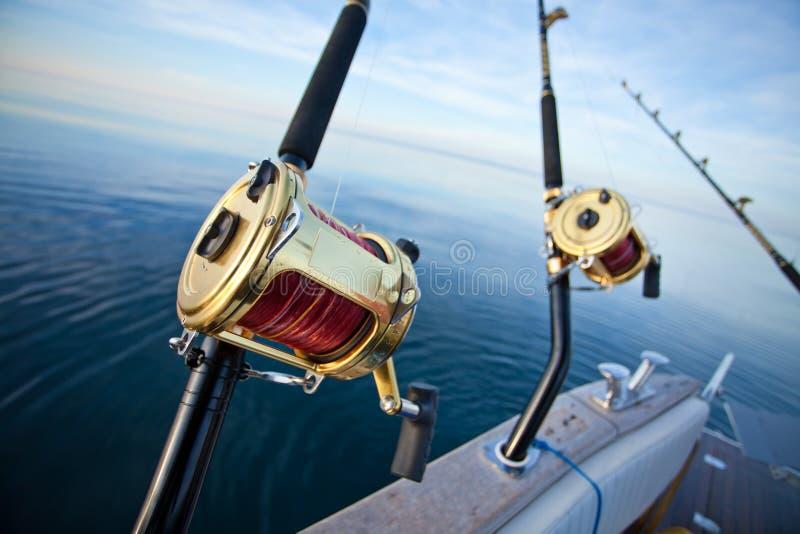 Pesca del gran gioco fotografie stock libere da diritti
