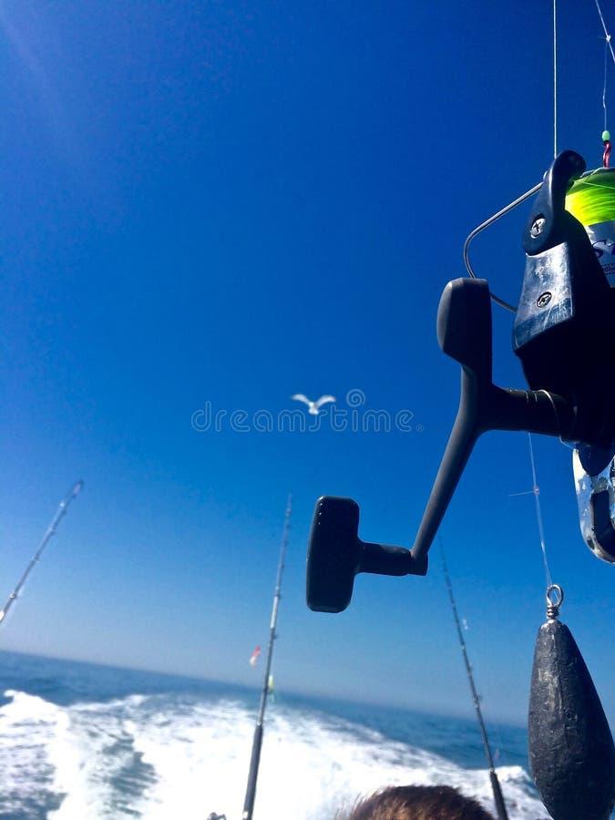 Pesca dell'oceano/pescare a traina dalla parte posteriore della barca fotografie stock libere da diritti