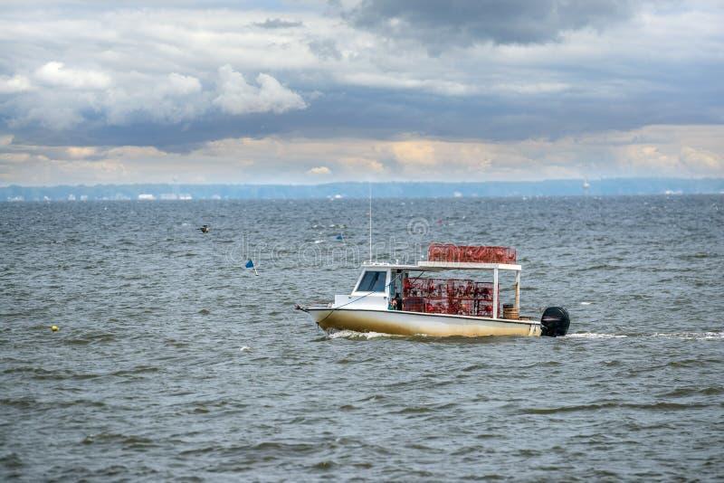 Pesca della barca del granchio di Maryland sulla baia di Chesapeake immagini stock