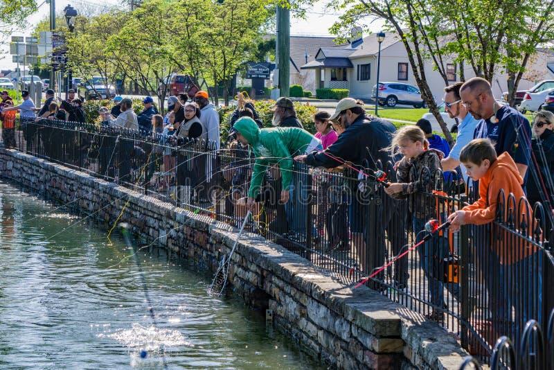Pesca della trota dei bambini immagini stock libere da diritti