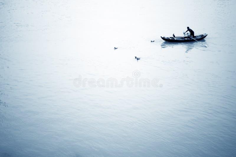 Pesca do Cormorant imagem de stock