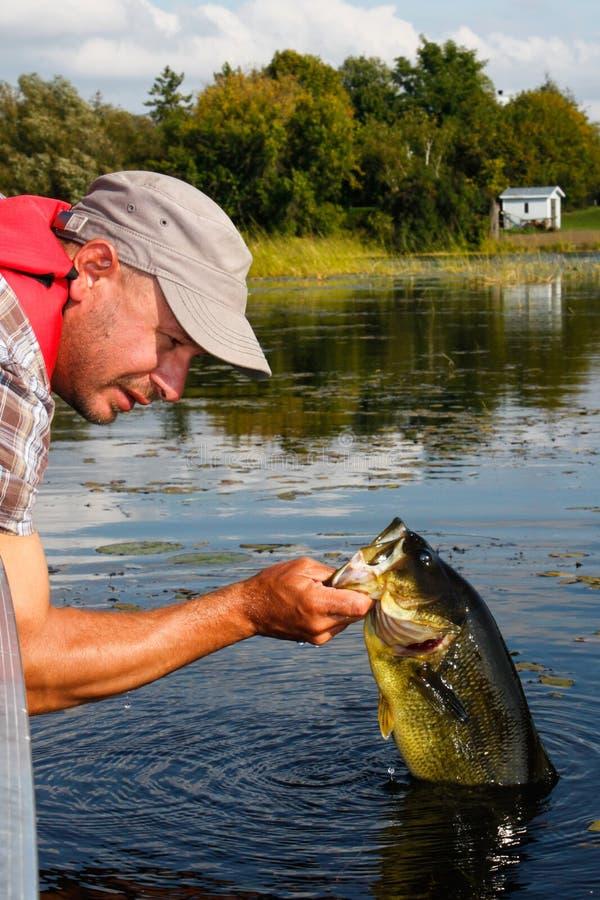 Pesca do homem com baixo Largemouth imagens de stock royalty free