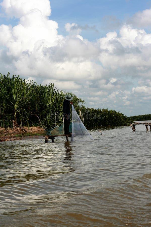 Pesca do homem no lago foto de stock