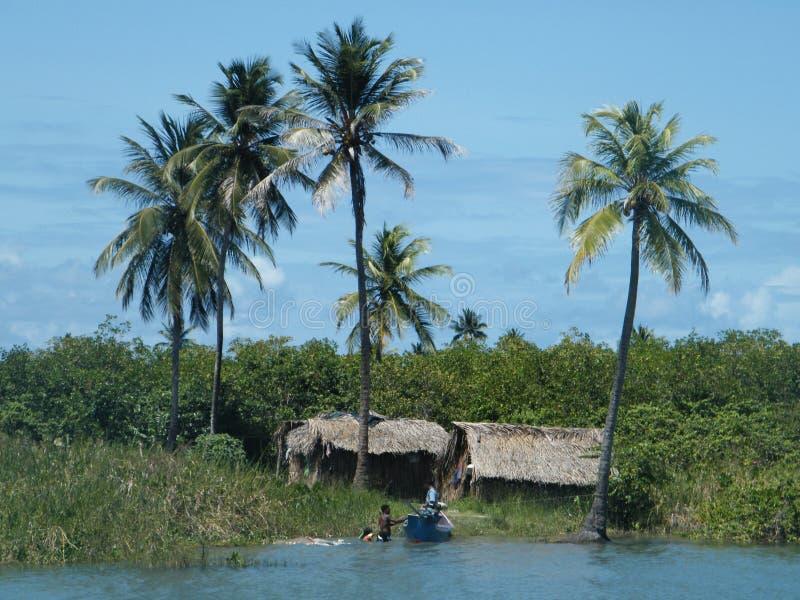 Pesca em Brasil fotografia de stock royalty free